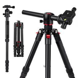 K&F Concept TM2515T Digital Camera DSLR Tripod Monopod Trans