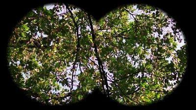 Binoculars High 8X22