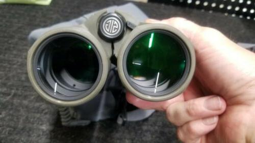 Sig Sauer Laser - OD Green