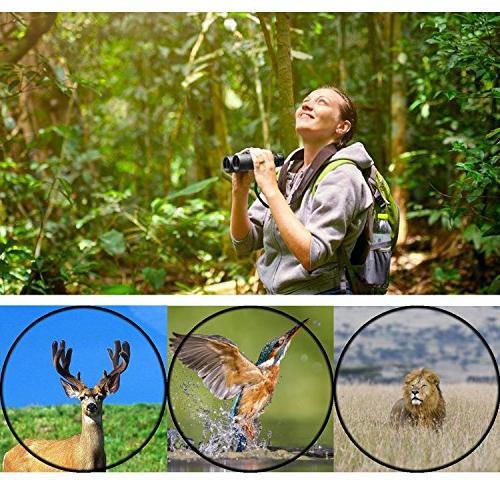 8x42 Binoculars Adults. Binoculars Watching Sightseeing Events, with Lens Cap